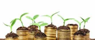 Инвестиционный проект на примере предприятия с расчетами и подробным описанием